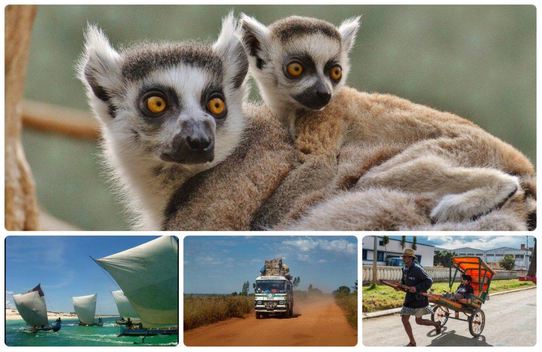 Madagaskar_collage3