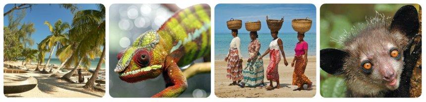 Madagaskar_collage4